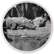 Rhino Nap Time Round Beach Towel by Thomas Woolworth