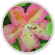 Rhodie With Dew II Round Beach Towel