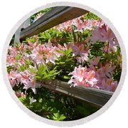 Rhododendrons In Tumwater Falls Park Round Beach Towel