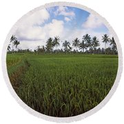 Rice Field, Bali, Indonesia Round Beach Towel