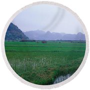 Rice Paddies In A Fiele, Vietnam Round Beach Towel