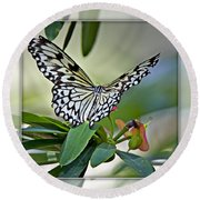 Rice Paper Butterfly 2b Round Beach Towel
