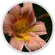 Round Beach Towel featuring the photograph Rich Day by Larry Bishop