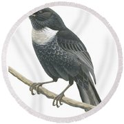 Ring Ouzel  Round Beach Towel