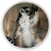 Round Beach Towel featuring the photograph Ring-tailed Lemur by Judy Whitton