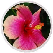 Rise And Shine - Hibiscus Face Round Beach Towel by Connie Fox