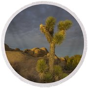 Reaching For The Sky Round Beach Towel by James Hammond