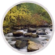 River Passing Through A Forest, Inyo Round Beach Towel