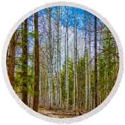 River Run Trail At Arrowleaf Round Beach Towel