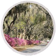 Road With Azaleas And Live Oaks Round Beach Towel
