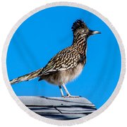 Roadrunner Round Beach Towel by Robert Bales
