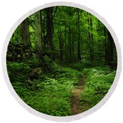 Round Beach Towel featuring the photograph Roaring Fork Trail by Debbie Green