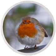 Robin 1 Round Beach Towel by Scott Carruthers