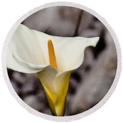 Rock Calla Lily Round Beach Towel by Melinda Ledsome
