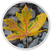 Round Beach Towel featuring the photograph Rock Creek Leaf by Chalet Roome-Rigdon