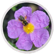 Round Beach Towel featuring the photograph Rockrose Flower With Bee by George Atsametakis