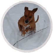 Romp In The Snow Round Beach Towel by Mim White