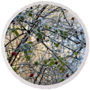Round Beach Towel featuring the painting Rosa Canina  by Felicia Tica