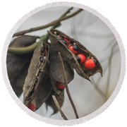 Rosary Pea Round Beach Towel by Jane Luxton