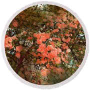 Rose 180 Round Beach Towel by Pamela Cooper
