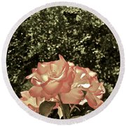 Rose 55 Round Beach Towel by Pamela Cooper