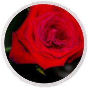 Special Rose For  Valentines Day. Rose. Hearts Round Beach Towel