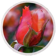 Rose On Rose Round Beach Towel