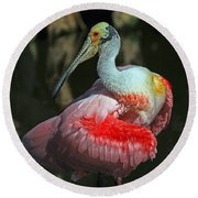 Round Beach Towel featuring the photograph Roseate Preening by Larry Nieland