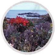 Round Beach Towel featuring the photograph Rosehip by Mim White