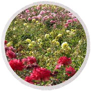 Round Beach Towel featuring the photograph Roses Roses Roses by Laurel Powell