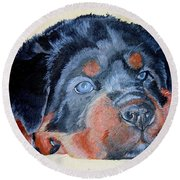 Round Beach Towel featuring the painting Rottweiler Puppy Portrait by Tracey Harrington-Simpson