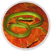Rough Green Snake Round Beach Towel