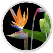Royal Beauty II - Bird Of Paradise Round Beach Towel