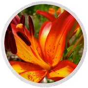 Royal Sunset Lily Round Beach Towel