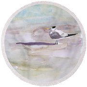 Royal Tern  Round Beach Towel