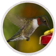 Ruby-throat Hummer Sipping Round Beach Towel