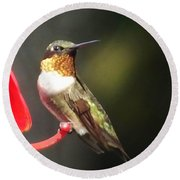 Ruby Throated Hummingbird 2 Round Beach Towel