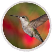 Ruby Throated Hummingbird Round Beach Towel