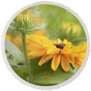 Rudbeckia Flower Round Beach Towel