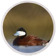 Round Beach Towel featuring the photograph Ruddy Duck  by Bryan Keil