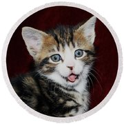 Round Beach Towel featuring the photograph Rude Kitten by Terri Waters