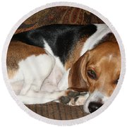 Ruff Day Round Beach Towel by John Telfer