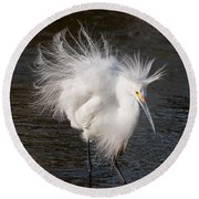 Ruffled Feathers Round Beach Towel