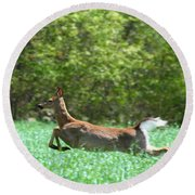 Round Beach Towel featuring the photograph Run Forest Run by Neal Eslinger