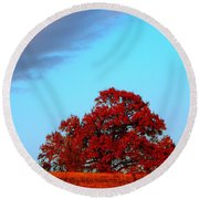 Rural Route Round Beach Towel by Chris Berry