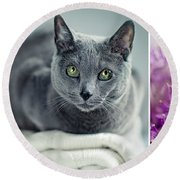 Russian Blue Collage Round Beach Towel