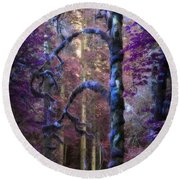 Round Beach Towel featuring the photograph Sacred Forest by Amanda Eberly-Kudamik