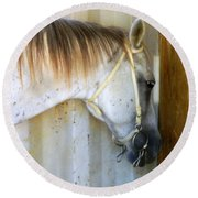 Round Beach Towel featuring the photograph Saddle Break by Kathy Barney