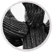 Saguaro Cactus Black And White 3 Round Beach Towel