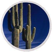 Saguaro Cactus Sunset Arizona State Usa Round Beach Towel